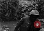 Image of Vietcong captured by Marines Vietnam, 1967, second 37 stock footage video 65675073301