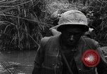 Image of Vietcong captured by Marines Vietnam, 1967, second 38 stock footage video 65675073301