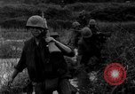 Image of Vietcong captured by Marines Vietnam, 1967, second 39 stock footage video 65675073301
