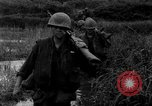Image of Vietcong captured by Marines Vietnam, 1967, second 41 stock footage video 65675073301