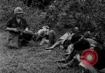 Image of Vietcong captured by Marines Vietnam, 1967, second 43 stock footage video 65675073301