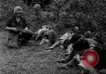 Image of Vietcong captured by Marines Vietnam, 1967, second 46 stock footage video 65675073301