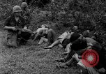 Image of Vietcong captured by Marines Vietnam, 1967, second 47 stock footage video 65675073301