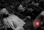 Image of Vietcong captured by Marines Vietnam, 1967, second 48 stock footage video 65675073301