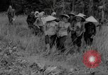 Image of Vietcong captured by Marines Vietnam, 1967, second 50 stock footage video 65675073301