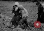 Image of Vietcong captured by Marines Vietnam, 1967, second 55 stock footage video 65675073301