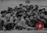 Image of Vietcong captured by Marines Vietnam, 1967, second 58 stock footage video 65675073301