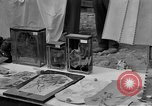 Image of Buchenwald Concentration Camp Germany, 1945, second 14 stock footage video 65675073357