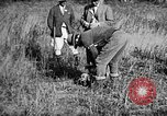Image of Cocker Spaniels Verbank New York USA, 1935, second 15 stock footage video 65675073364