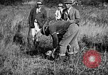 Image of Cocker Spaniels Verbank New York USA, 1935, second 18 stock footage video 65675073364