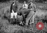 Image of Cocker Spaniels Verbank New York USA, 1935, second 19 stock footage video 65675073364