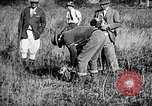 Image of Cocker Spaniels Verbank New York USA, 1935, second 21 stock footage video 65675073364