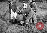 Image of Cocker Spaniels Verbank New York USA, 1935, second 23 stock footage video 65675073364