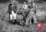 Image of Cocker Spaniels Verbank New York USA, 1935, second 24 stock footage video 65675073364