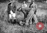 Image of Cocker Spaniels Verbank New York USA, 1935, second 26 stock footage video 65675073364