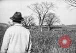 Image of Cocker Spaniels Verbank New York USA, 1935, second 38 stock footage video 65675073364