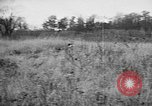 Image of English Springer Spaniels Verbank New York USA, 1935, second 16 stock footage video 65675073366