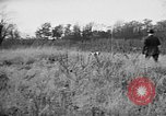 Image of English Springer Spaniels Verbank New York USA, 1935, second 17 stock footage video 65675073366