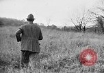 Image of English Springer Spaniels Verbank New York USA, 1935, second 23 stock footage video 65675073366