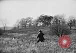 Image of English Springer Spaniels Verbank New York USA, 1935, second 61 stock footage video 65675073366