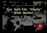 Image of Fulton Fish Market New York United States USA, 1903, second 10 stock footage video 65675073421