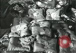 Image of Joseph Stalin Moscow Russia Soviet Union, 1953, second 2 stock footage video 65675073434