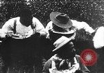 Image of Watermelon Contest United States USA, 1900, second 53 stock footage video 65675073468
