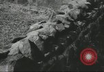 Image of Civil War Battlefield Washington DC USA, 1958, second 36 stock footage video 65675073541