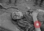 Image of United States troops Germany, 1945, second 39 stock footage video 65675073817