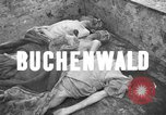 Image of corpses Germany, 1945, second 2 stock footage video 65675073818