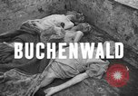 Image of corpses Germany, 1945, second 4 stock footage video 65675073818