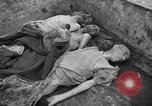 Image of corpses Germany, 1945, second 5 stock footage video 65675073818