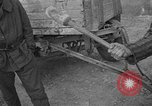 Image of corpses Germany, 1945, second 8 stock footage video 65675073818