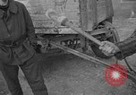 Image of corpses Germany, 1945, second 9 stock footage video 65675073818