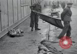 Image of emaciated corpses Germany, 1945, second 20 stock footage video 65675073860