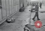 Image of emaciated corpses Germany, 1945, second 24 stock footage video 65675073860