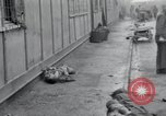 Image of emaciated corpses Germany, 1945, second 25 stock footage video 65675073860