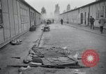 Image of emaciated corpses Germany, 1945, second 33 stock footage video 65675073860
