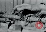 Image of Breendonck Concentration Camp Belgium, 1945, second 16 stock footage video 65675073887
