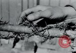 Image of Breendonck Concentration Camp Belgium, 1945, second 17 stock footage video 65675073887
