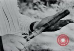 Image of prisoners of camp Belgium, 1945, second 19 stock footage video 65675073888