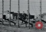Image of prisoners of camp Hanover Germany, 1945, second 21 stock footage video 65675073890