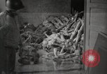 Image of pile of emaciated corpses Germany, 1945, second 4 stock footage video 65675073907