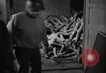 Image of pile of emaciated corpses Germany, 1945, second 5 stock footage video 65675073907