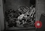 Image of pile of emaciated corpses Germany, 1945, second 15 stock footage video 65675073907