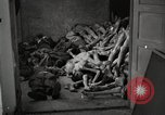 Image of pile of emaciated corpses Germany, 1945, second 17 stock footage video 65675073907