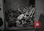 Image of pile of emaciated corpses Germany, 1945, second 30 stock footage video 65675073907