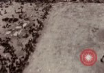 Image of bomb-damaged buildings Worms Germany, 1945, second 3 stock footage video 65675073926