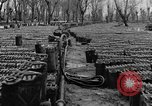 Image of United States soldiers Italy, 1943, second 17 stock footage video 65675076939