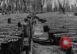 Image of United States soldiers Italy, 1943, second 19 stock footage video 65675076939